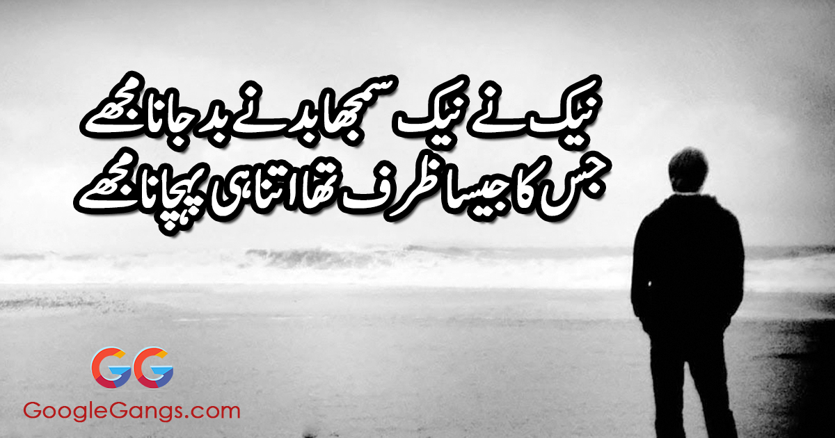 Naik ne naik samjha, bad ne bad Jaana mujhe